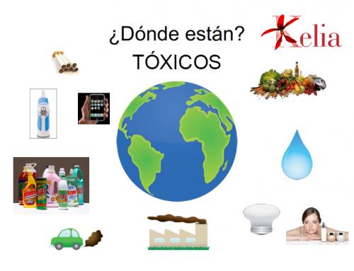 Los tóxicos ambientales y la salud de nuestros hijos  (1ª Parte)
